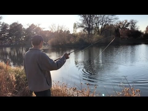 URBAN FISHING | Salt Lake City, Utah