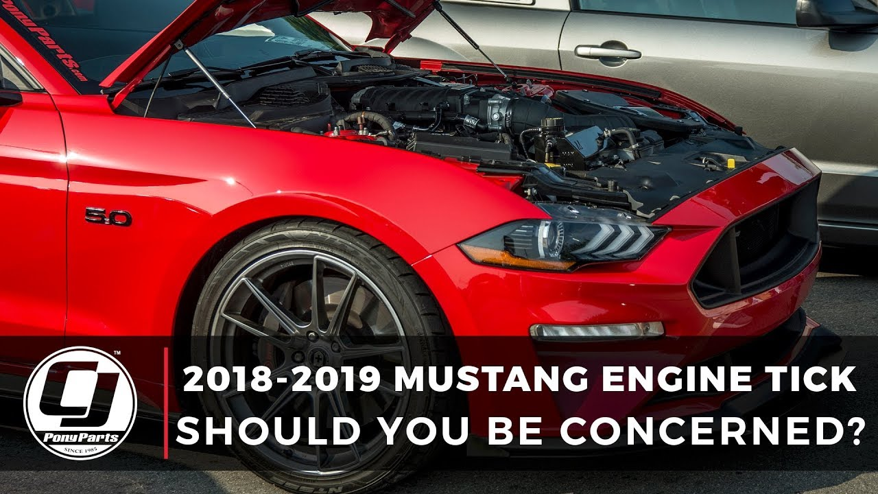 2018 Mustang Engine Tick | BBQ and Typewriter Tick | CJ Pony