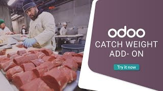 Catch weight add- on for odoo erp -