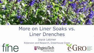 More on Liner Soaks vs. Liner Drenches