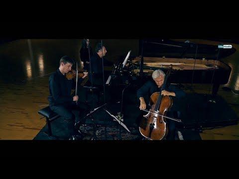 VIENNA PIANO TRIO - J. Haydn, Piano Trio No.  44 In E Major, Hob  XV No  28 - SynchronStageVienna