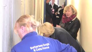 The Duchess Of Cornwall Visits Battersea Dogs & Cats Home