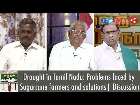 Drought in Tamil Nadu: Problems faced by Sugarcane farmers and solutions | Discussion