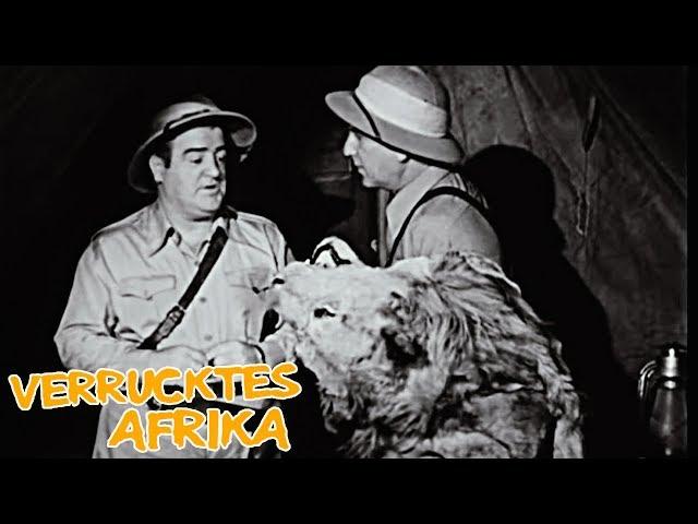 Verrücktes Afrika (Abenteuer Klassiker auf Deutsch, komplette Komödie auf Deutsch)
