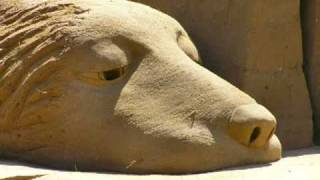 Animals Of The World Sand Sculpture 2006 Australia