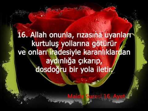 download Maide suresi Türkçe Meal 14, 15, 16 ve 17. Ayetler
