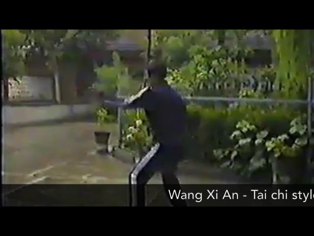 Wang Xi An - Tai Chi style Chen Xinjia Erlu Paochui [陈氏太极拳新架 Taijiquan style Chen]
