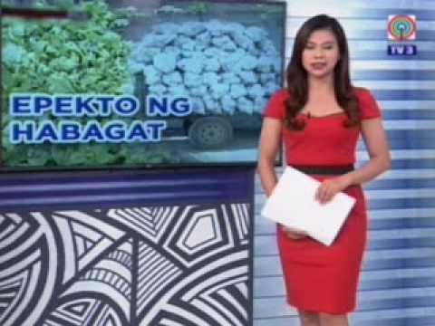 TV Patrol Northern Luzon - Aug 4, 2017