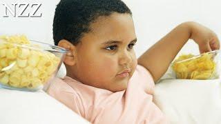 Die Fett-Epidemie - Dokumentation von NZZ Format (2004)