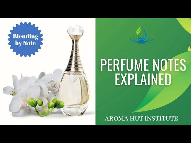 Perfume Notes Explained