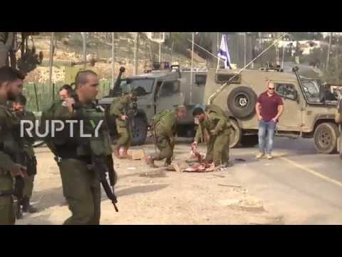 State of Palestine: Paramedic implicated in alleged car-ramm