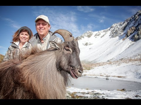 NZ 2017 - Guided By Four Seasons Safaris
