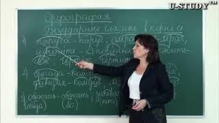 Подготовка к ЕНТ: Русский язык (Орфография: Безударные гласные в корне слов)