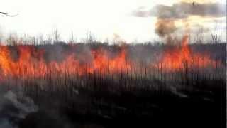 Controlled burn - Ephemeral wetlands south of Harvey