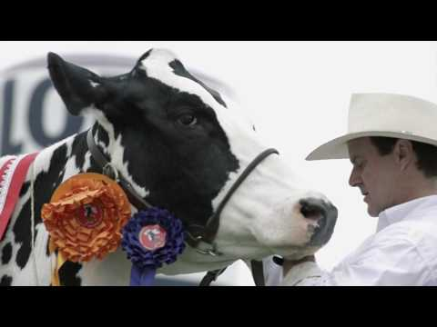 Agrovet Market Animal Health 2014 - Corporative Video - English Spoken - HD