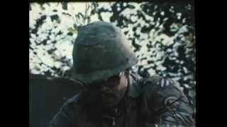 THE UNITED STATES THIRD INFANTRY DIVISION IN VIETNAM