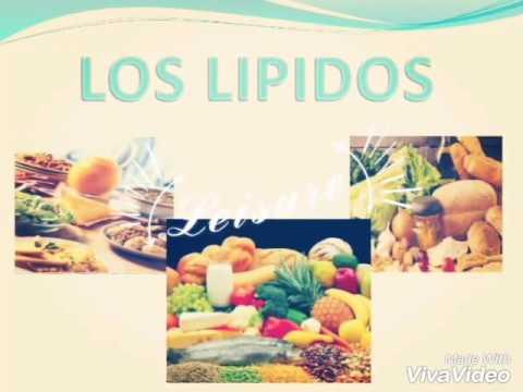 Biomol culas org nicas carbohidratos l pidos y prote nas parte 1 youtube - Q alimentos son proteinas ...