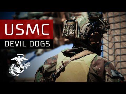 DEVIL DOGS USMC
