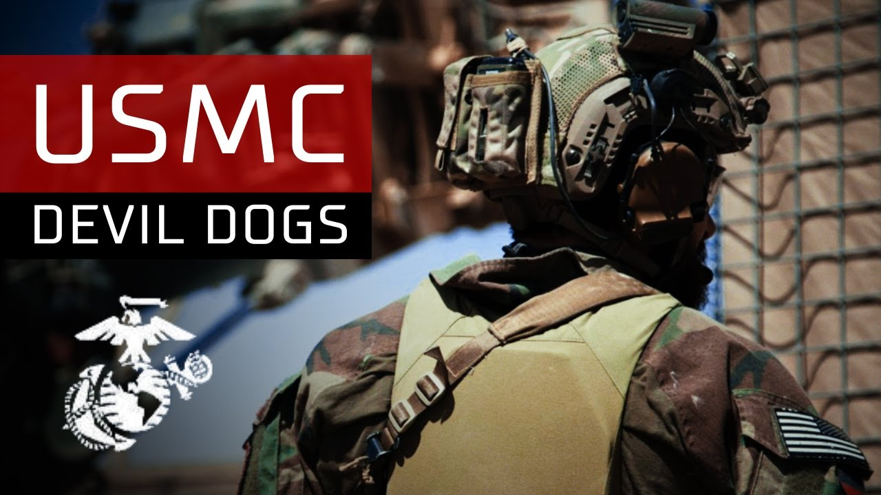 Get Logo Devil Dogs Marines