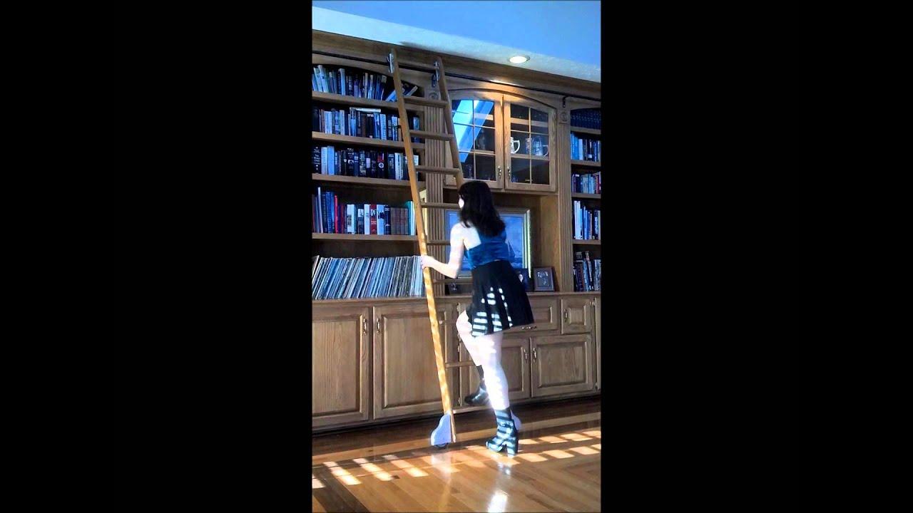 100 rolling ladder bookcase batman bookcase bobsrugby com