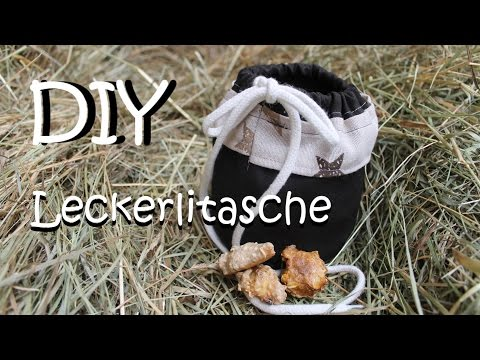 DIY Leckerlitasche