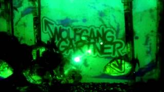 WOLFGANG GARTNER - PIRANHA (OUT NOW ON BEATPORT)