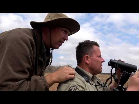 AFRICA CALLING - MOVIE TRAILER