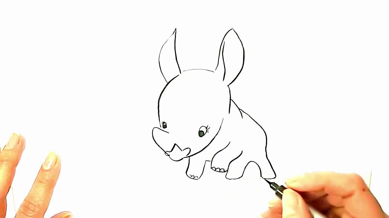 How to Draw a Rhino? Cute Baby Rhino