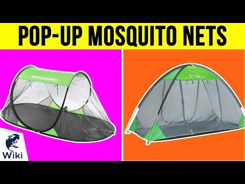 10 Best Pop-Up Mosquito Nets 2019