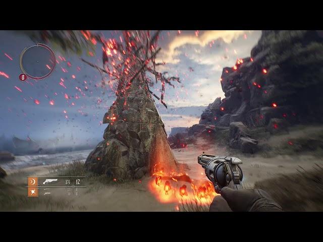 Witchfire (видео)