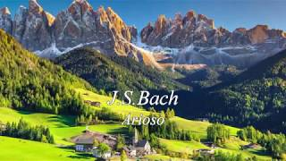 Floris Onstwedder & ZHdK Chamber Orchestra, J.S.Bach – Arioso from Cantata BWV 156 - Adagio