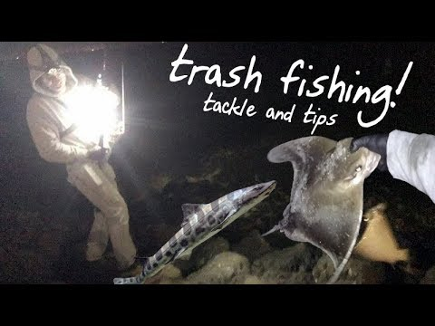 How To Catch Sharks And Rays | Shore-Based Night Fishing