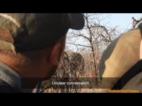 Hunting elephants in South Africa