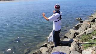 Shore Fishing - SD River mouth. Pt. 2 the Revengeance