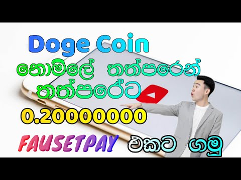 Instant Pay DOGE