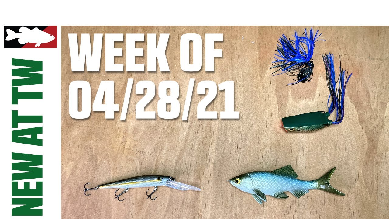 """X12 X6 SPECIAL OFFER⭐⭐⭐⭐⭐ 30LB 8/""""//20cm X20 Wire Trace Pike Fishing 12""""//30cm"""