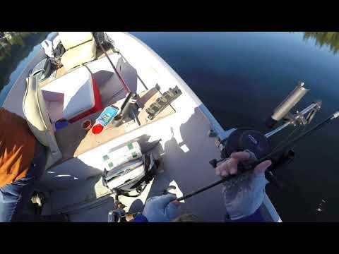Elgin Fishing God's Tooth Spoons - Lake Cavanaugh, WA  10/20/2018
