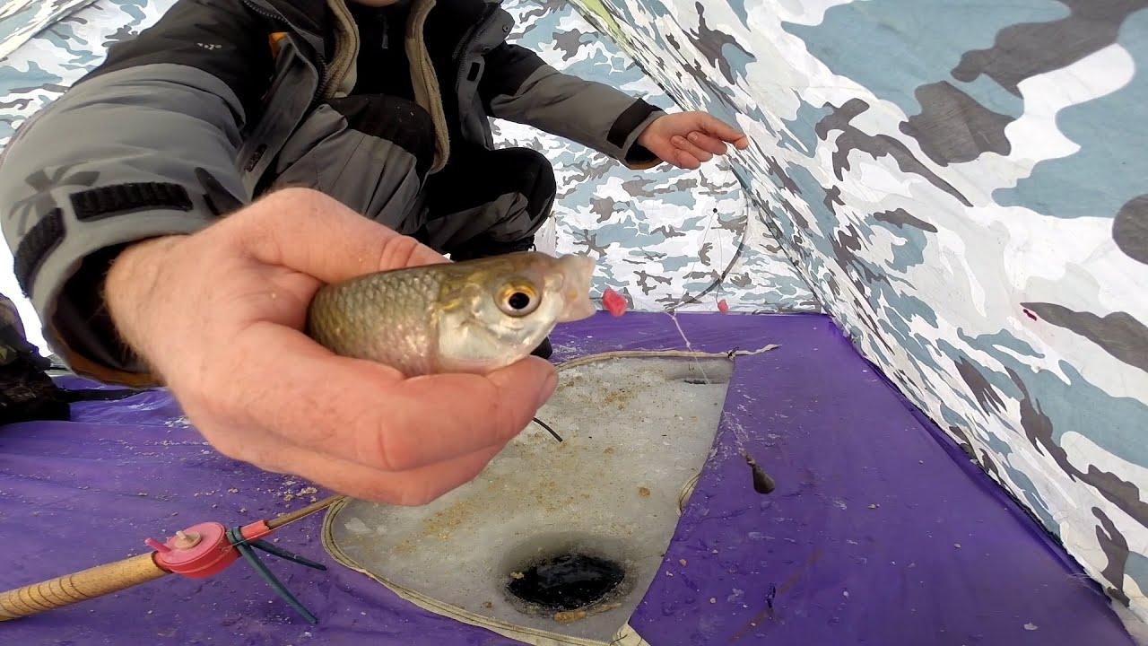 рыбалка в январе на плотву