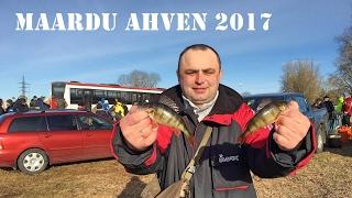 Maardu Ahven 2017. Соревнования по зимней рыбалке. Ловля Окуня и Плотвы со льда.