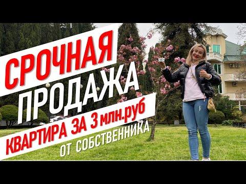 💥 СРОЧНАЯ ПРОДАЖА! Квартира за 3 млн.руб. в Сочи! #жививсочи Недвижимость, вторичка, Светлана.