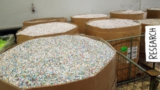 Company visit - Plastic Shredding