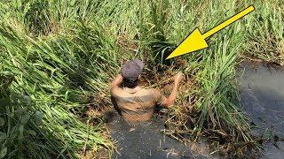 Không ngờ trong đám cỏ này cá lại kinh khủng đến thế | bắt cá khủng trong đám cỏ | THÚ VUI MIỀN TÂY