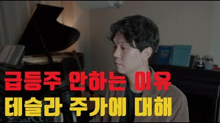 IPO, SPAC, 중국주식 안하는 이유 / 테슬라 주…