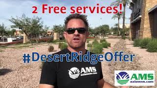 FREE Landscape Maintenance Services In The Desert Ridge Area