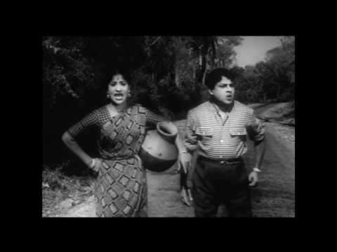 Kattu Roja Full Movie    SSR    Saroja...