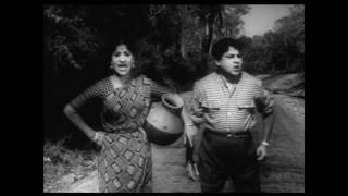 Kattu Roja Full Movie |  SSR |  Saroja Devi | காட்டு ரோஜா