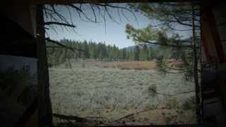SIERRA VALLEY Real Estate MLS#201300388 Plumas County California by CAROL MURRAY