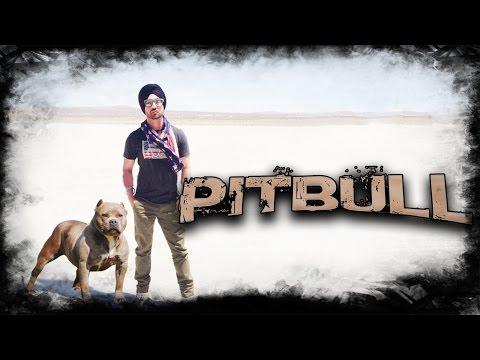 DILJIT DOSANJH ( NEW SONG ) - PITBULL || Ft. Preet Hundal || New Punjabi Songs 2016 || Full HD