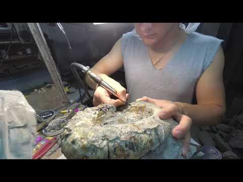 Препарация Аммонита | Preparation Fossil (Ammonite)