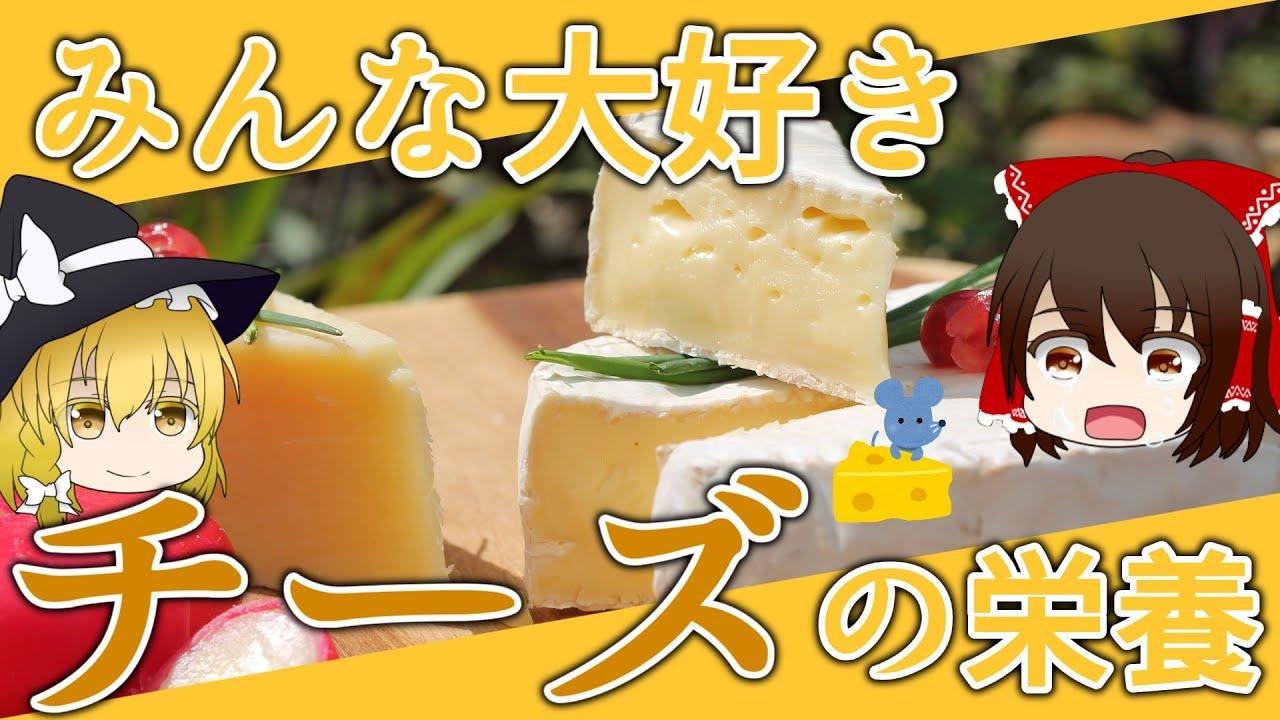 【ゆっくり解説】チーズの栄養について解説します。